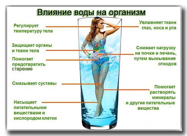 Сколько пить воды- мифы и факты