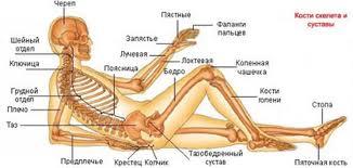 Заболевания суставов - тибетский рецепт