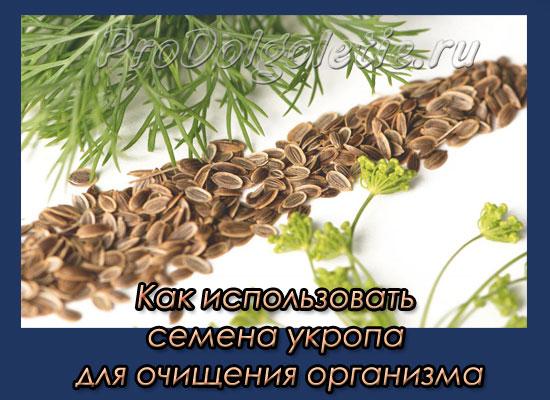 kak-ispolzovat-semena-ukropa-dlya-ochishcheniya-organizma